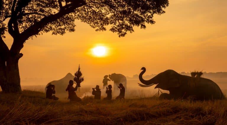 עבודה באפריקה